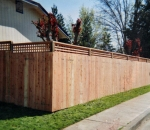 gallery_redwood_fence_4