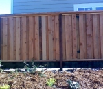 gallery_redwood_fence_8