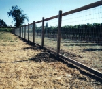 gallery_wire_fence_1